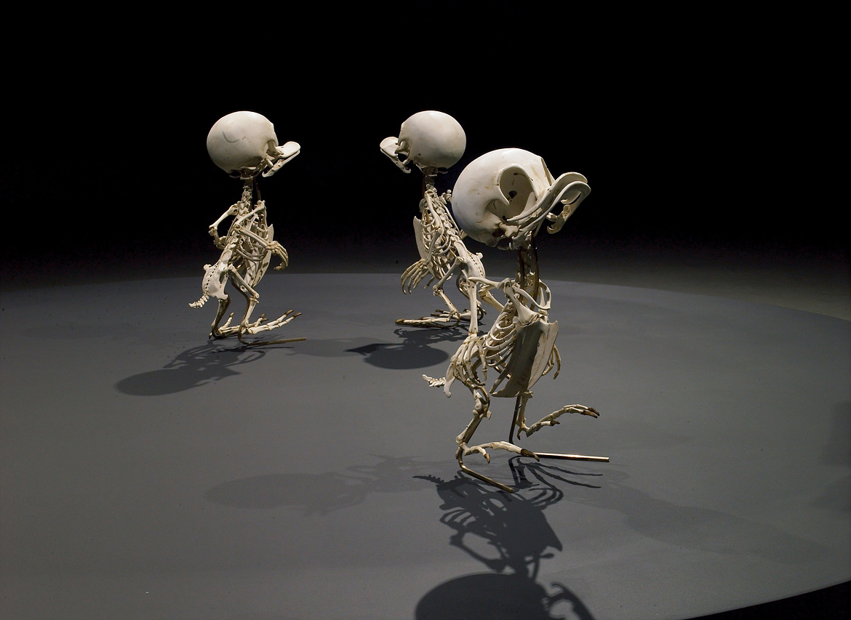 Esqueleto Huguinho, Zezinho e Luisinho