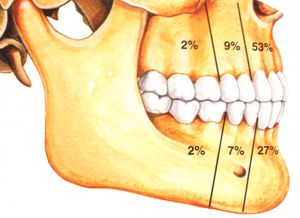 Distribuição relativa de ocorrência do tumor odontogênico adenomatóide